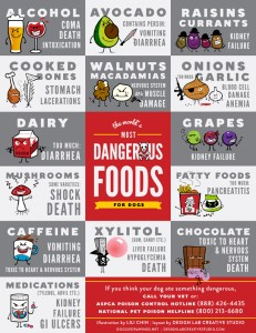 well-14-new-pet-toxicity-poster