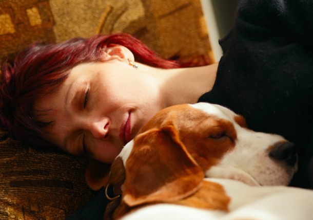 Sleeping With Your Cat Or Dog Is It Healthy Texvetpets